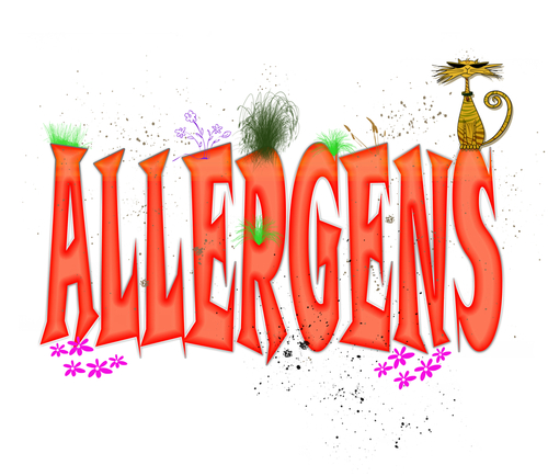 Don't Let Fall Allergies Get You Down; Filter The Allergens