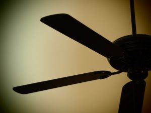 Ceiling Fans for Cooling Efficiency