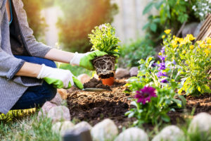 Can Gardening Improve Your HVAC Performance?